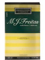 M. J. Freitas branco 10L